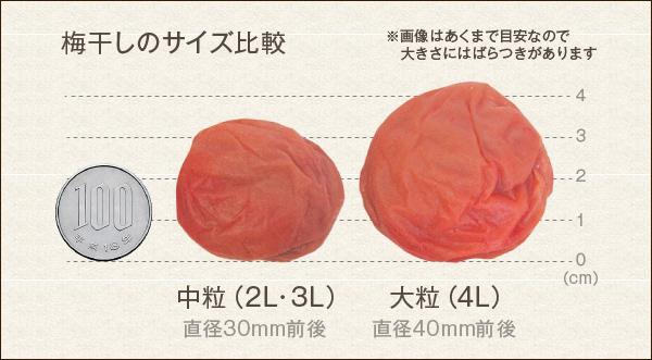 梅干のサイズ